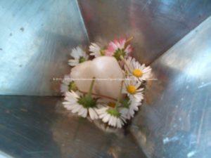 Orgonite Machen - Een kwarts en witte bloemen