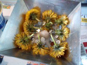 Maak Orgonite - bijenwas, metalen en gele bloemen